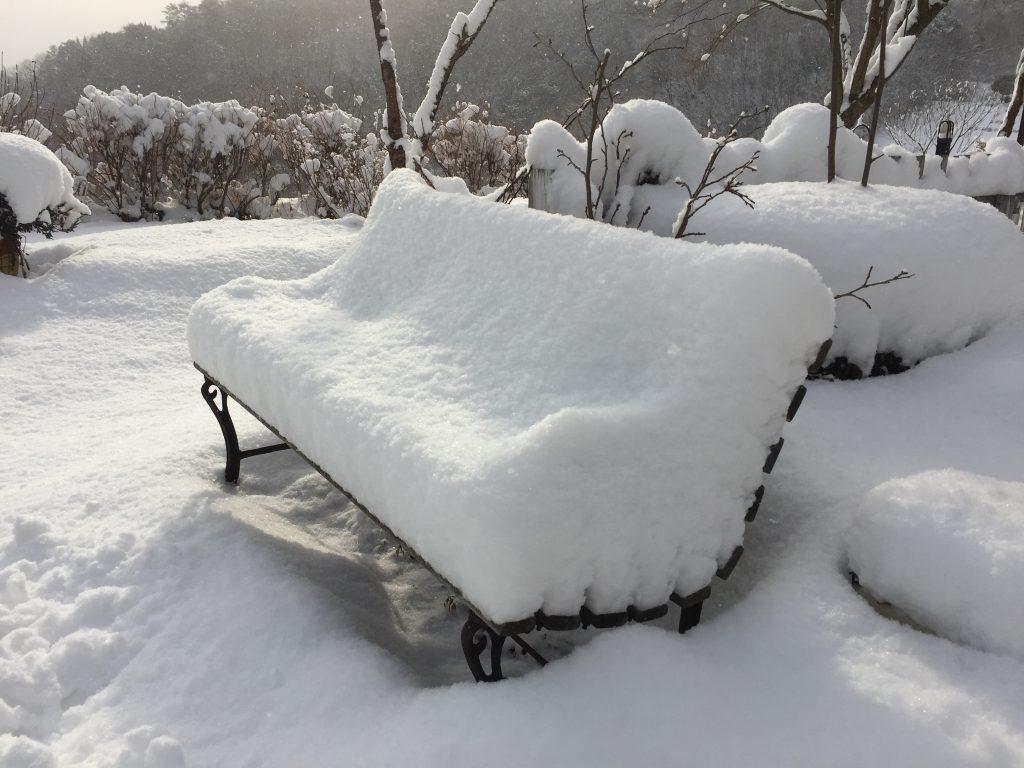 雪 積雪 雪かき